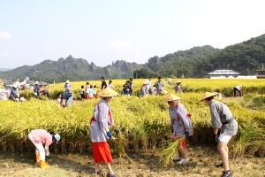 田染荘 収穫祭(平成26年10月12日)